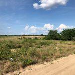 Polk County/Central Florida | Property categories |