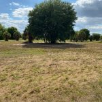 view of vacant land for sale.