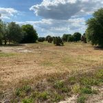 View of Vacant lot for sale.
